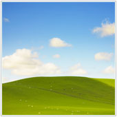 What to do about Windows XP